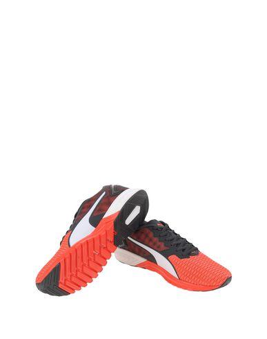 Pumas Chaussures De Sport Double Enflamment magasin de vente magasin de destockage prix bas pas cher ebay best-seller à vendre Sjdie