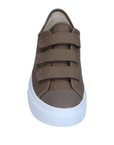 Baskets Vans à vendre PciIO