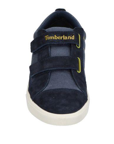 pour pas cher Dépêchez-vous Baskets Timberland Vente en ligne la sortie authentique faux rabais Af8hA