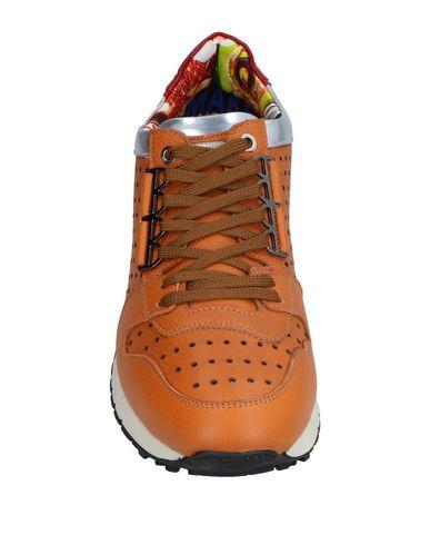 prédédouanement ordre pour pas cher Chaussures De Sport Barracuda qualité supérieure combien à vendre magasin d'usine JqH7Wj