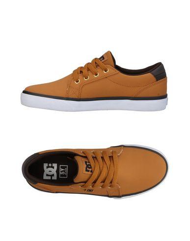 Dc Baskets Shoecousa