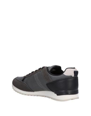 De Chaussures Chaussures De Sport Zfxqpd4 Colmar q6YwF