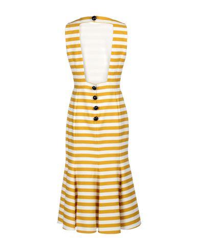 Robe Dolce & Gabbana Demi-jambe jeu 2014 unisexe Magasin d'alimentation Amazon de sortie Livraison gratuite 2014 DFS0rLBTr7