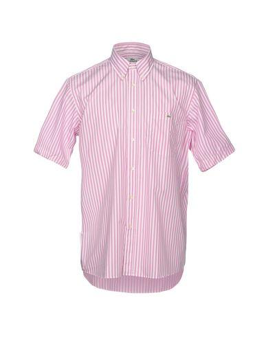 Chemises Rayées Lacoste