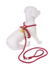 DOG & DOLLS - Harness & Leash Set