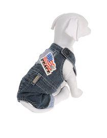 DVS DOG VIP STAR - Sweater