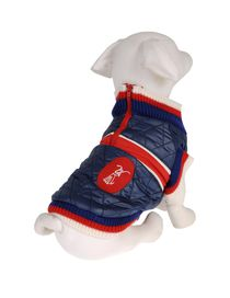 DVS DOG VIP STAR - Coat