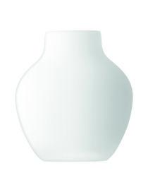 LSA - Vase
