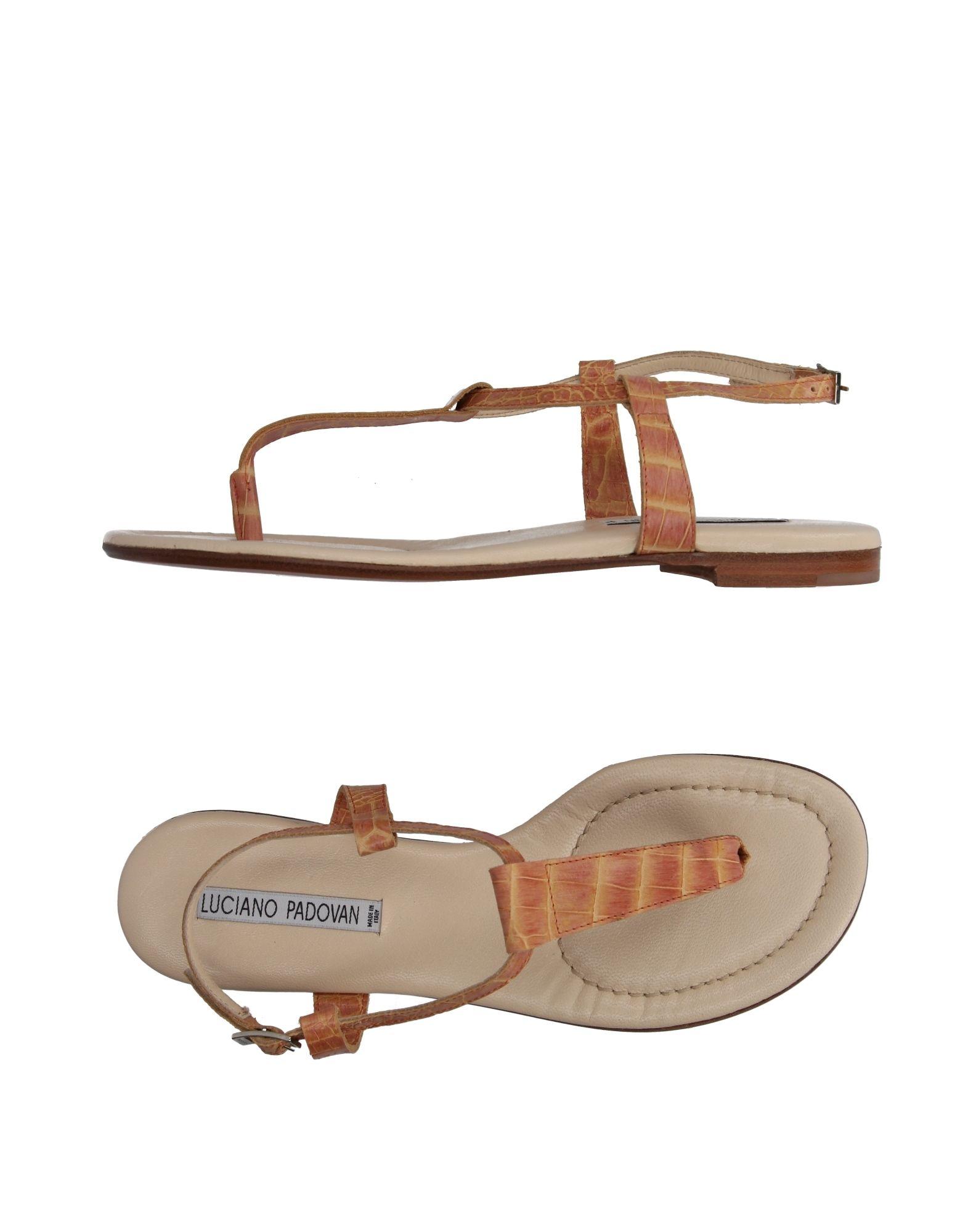 Gut um billige Schuhe  zu tragenLuciano Padovan Dianetten Damen  Schuhe 11041651JQ 378529