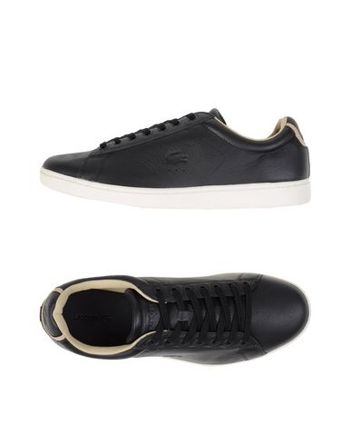 LACOSTE CARNABY EVO 316 1 Sneakers
