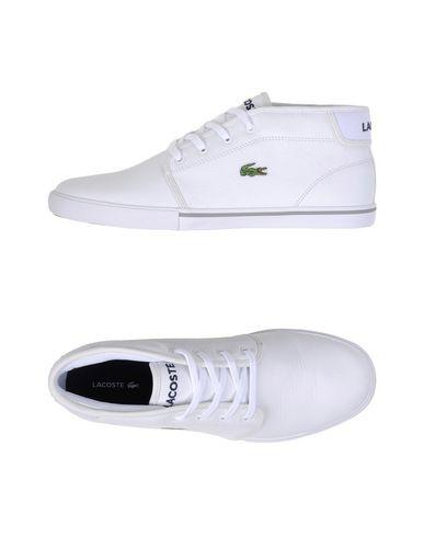 413b1e2027d9df Lacoste Ampthill Lcr3 - Sneakers - Men Lacoste Sneakers online on ...