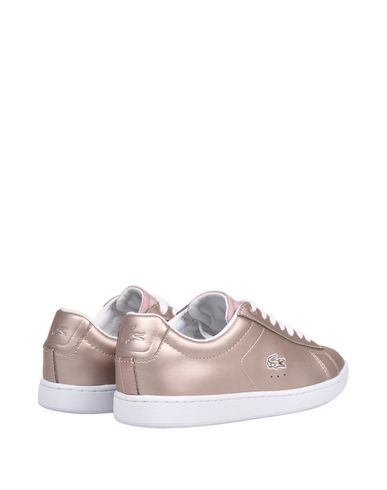3084e62a3fe7 Carnaby EVO 117 3. Sneakers. LACOSTE Sneakers; LACOSTE Sneakers; LACOSTE  Sneakers ...
