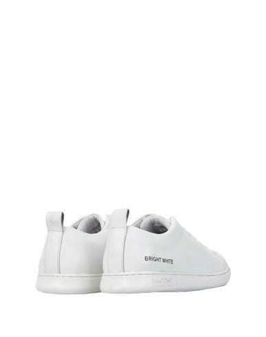 PANTONE UNIVERSE NYC LEATHER Sneakers PANTONE NYC FOOTWEAR UNIVERSE LEATHER FOOTWEAR Sneakers PANTONE 5wxHaCpRq