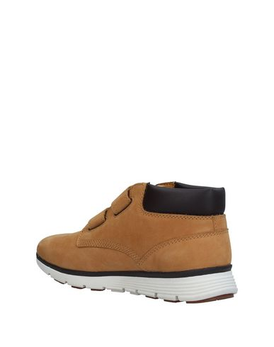 TIMBERLAND Sneakers Sneakers TIMBERLAND 7WWq8v