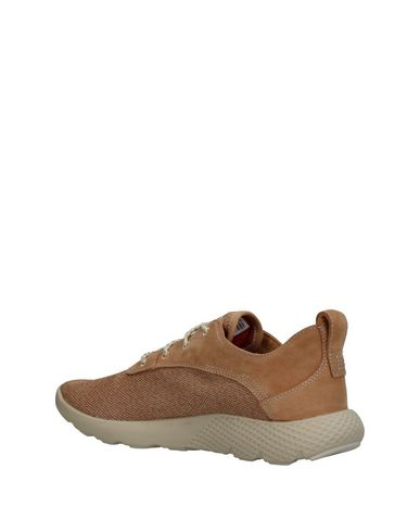 TIMBERLAND Sneakers TIMBERLAND Sneakers TIMBERLAND 0rSq407n