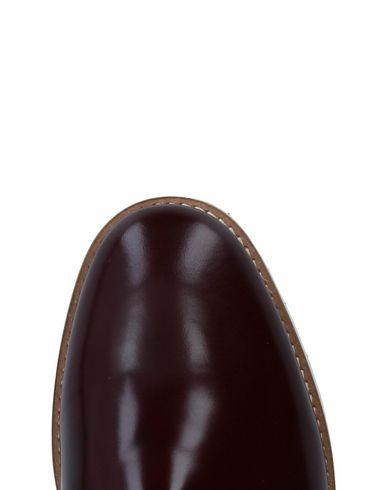 SHUGA Zapato de cordones