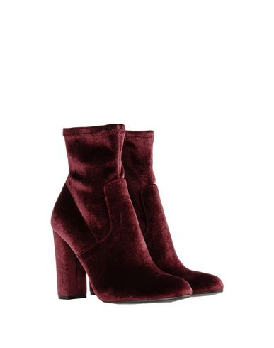 Bottine Madden Bottine Madden Steve Steve Madden Bottine Steve Bordeaux Bordeaux REPqdq