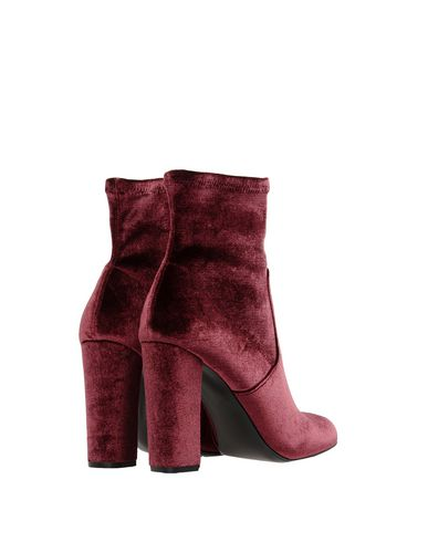 Bottine Steve Madden Madden Steve Bordeaux Bordeaux Bottine qxwXHEqU