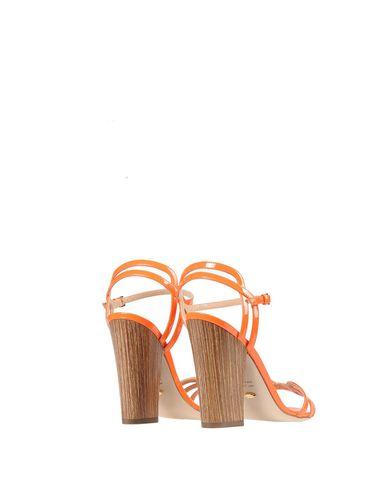 Empfehlen Verkauf Online SERGIO ROSSI Sandalen Wählen Sie Eine Beste Online wf1ftoo