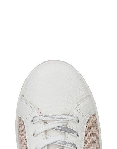 DIVINE FOLLIE Sneakers Billig Verkaufen Low-Cost Spielraum Sammlungen Günstig Kaufen Manchester Großen Verkauf Grau-Outlet-Store Online Großhandelspreis Günstig Online miv8a0y3p