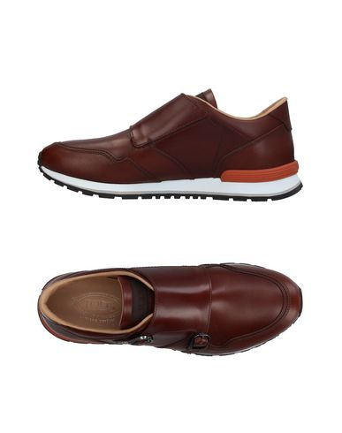 Zapatos con descuento Zapatillas Tod's Hombre - Zapatillas Tod's - 11396960OV Cacao