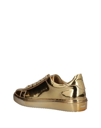 MADDEN Sneakers STEVE MADDEN Sneakers Sneakers MADDEN STEVE STEVE Sneakers MADDEN Sneakers Sneakers MADDEN MADDEN STEVE STEVE STEVE UwqHXR