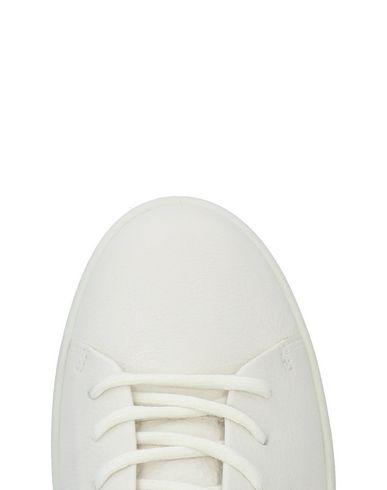 SCIUSCERT Sneakers