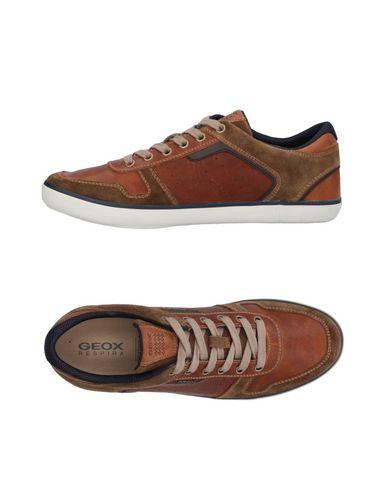 Zapatos Hombre con descuento Zapatillas Geox Hombre Zapatos - Zapatillas Geox - 11414692GD Marrón 7d88f2