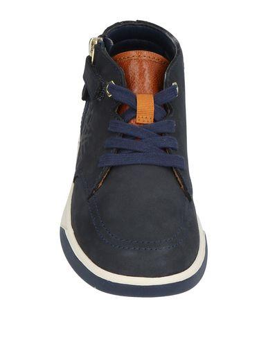 Sneakers TIMBERLAND Sneakers TIMBERLAND Sneakers TIMBERLAND Sneakers Sneakers Sneakers TIMBERLAND TIMBERLAND TIMBERLAND EnWqxPR