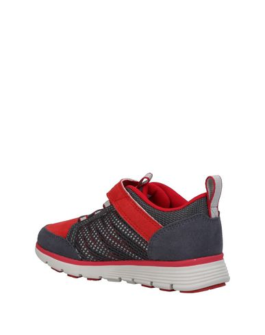 TIMBERLAND Sneakers Sneakers TIMBERLAND rtqwZrp