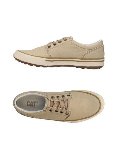 CAT Sneakers