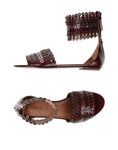 Los últimos zapatos de hombre y mujer Sandalia Dolce & Gabbana Mujer - Sandalias Dolce & Gabbana- 11430603QT Berenjena