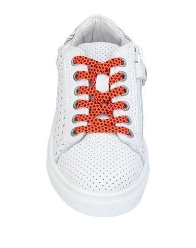 WALK WALK SAFARI Sneakers SAFARI 1q0PwpX