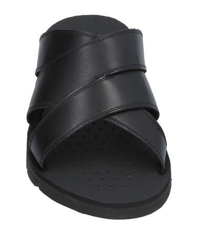 Noir Sandales Sandales Geox Noir Geox Noir Sandales Geox Geox Noir Sandales t4c5qqwA