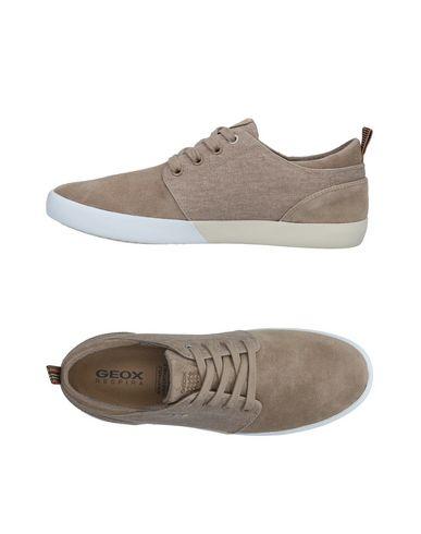 Zapatos con descuento Zapatillas Geox Hombre - Zapatillas Geox - 11479506PG Gris perla
