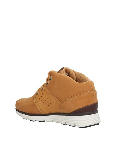 TIMBERLAND Sneakers