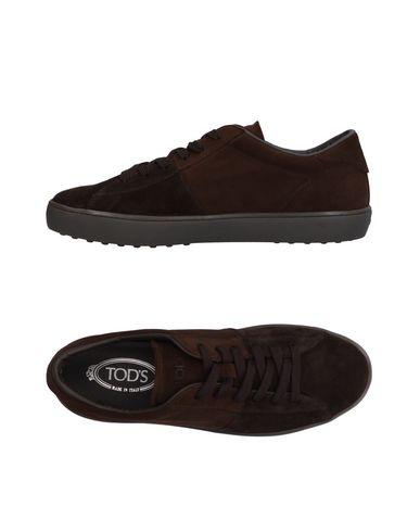 944b356bd3c Tod's Sneakers - Men Tod's Sneakers online on YOOX Denmark - 11521837QL