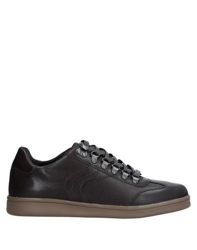 Zapatos con descuento Zapatillas Geox - Hombre - Zapatillas Geox - Geox 11541169XP Café eedcd0