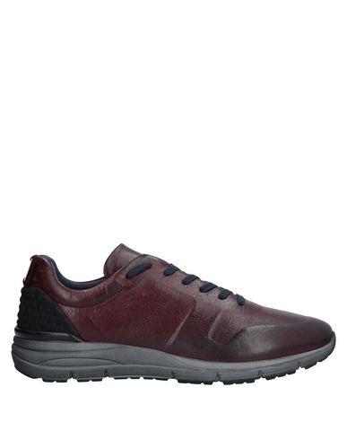 Los para zapatos más populares para Los hombres y mujeres Zapatillas Nero Giardini Hombre - Zapatillas Nero Giardini Burdeos a9780b