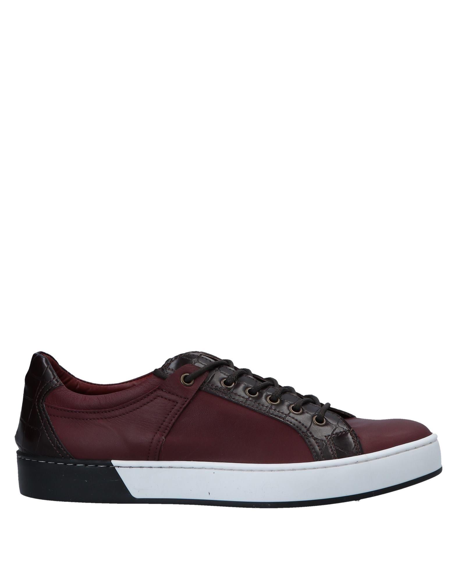 Signs Sneakers - Men  Signs Sneakers online on  Men United Kingdom - 11556616IH 53720b