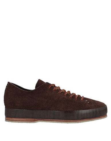 FEIT Sneakers in Cocoa