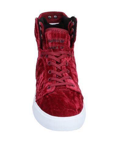 Bordeaux Supra Sneakers Sneakers Supra qtndB0w