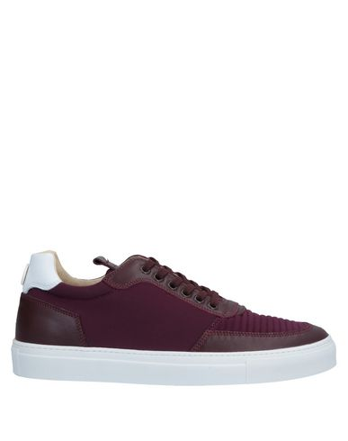 MARIANO DI VAIO Sneakers in Maroon