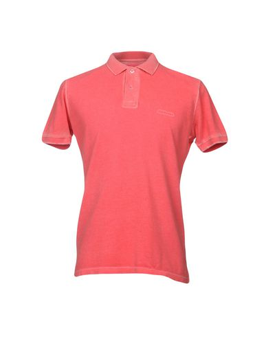 Roy Rogers Polo pre-ordre for salg B4OI0