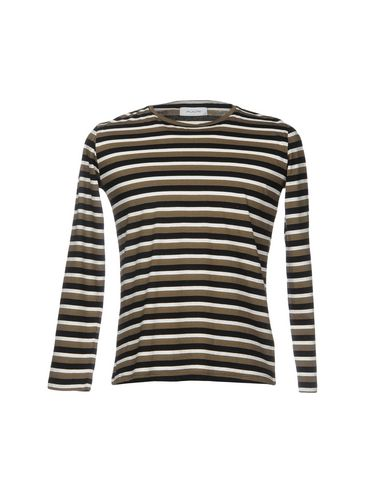 AGLINITシャツ