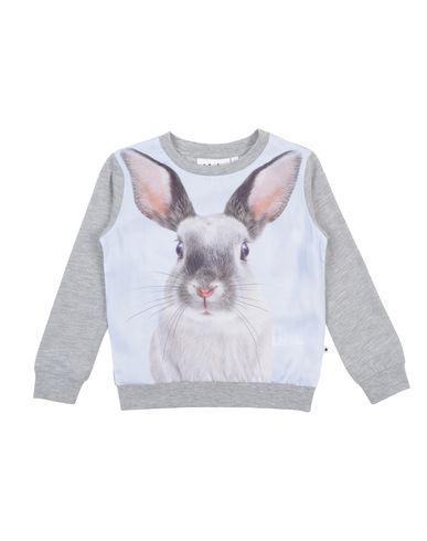 MOLO Sweatshirt in Grey