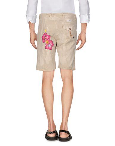 THE EDITOR Shorts