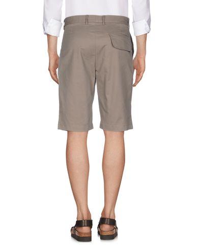 CORELATE Shorts