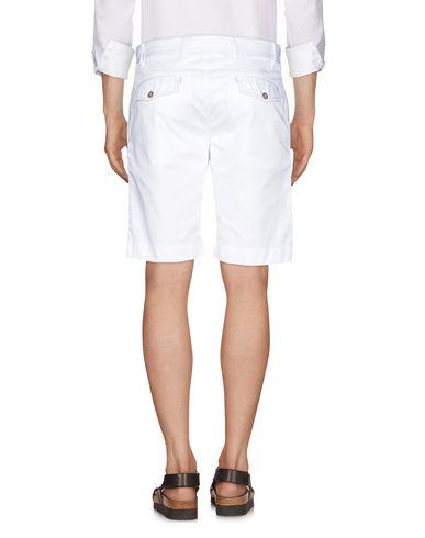 CORTIGIANI Shorts