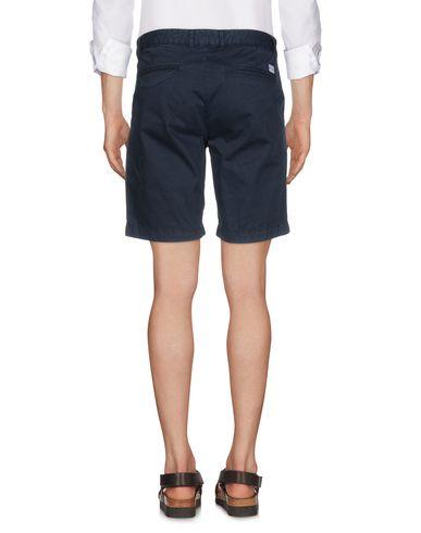 U.S.POLO ASSN. Shorts